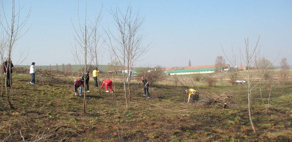 Rotary Alba Iulia -Izvor 02